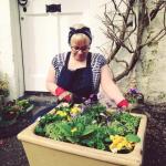 Nicki MacRae Art - Planting flowers in the Spring sun