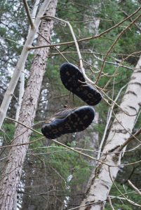 Shoes up a tree at the Clootie Well
